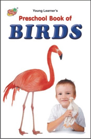Preschool Book of Birds