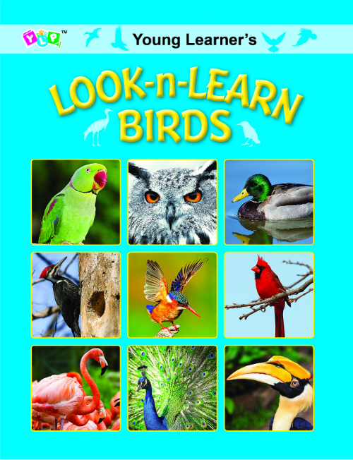 Look-n-Learn Birds