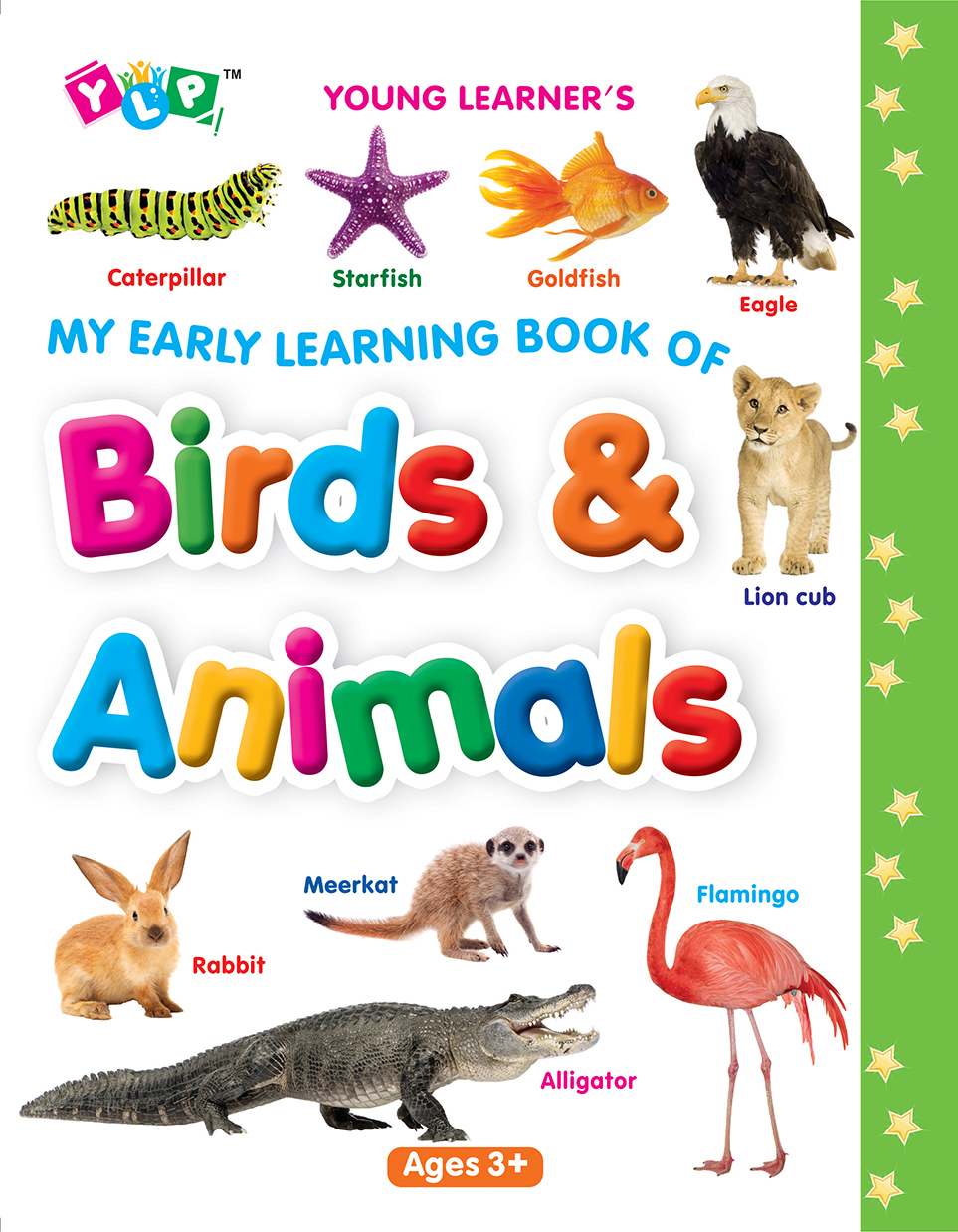 My Early Learning Book of Birds & Animals (Full Laminated)